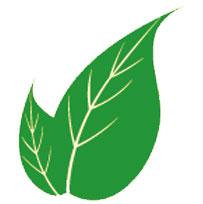 topuk-dikenine-karşı-yararlı-gelen-bitkiler